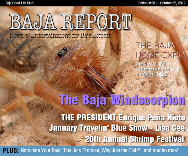 The Baja Report - Edition #261