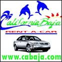 California Baja Rentals