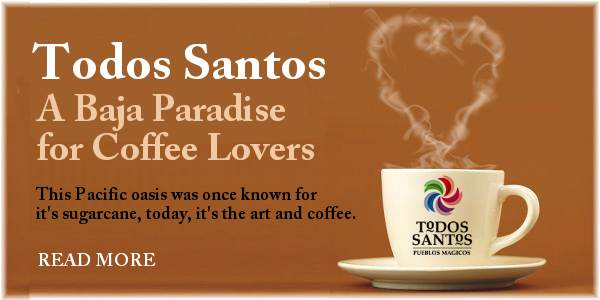Todos Santos Love Coffee