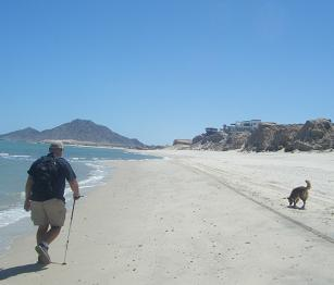 Baja Walk