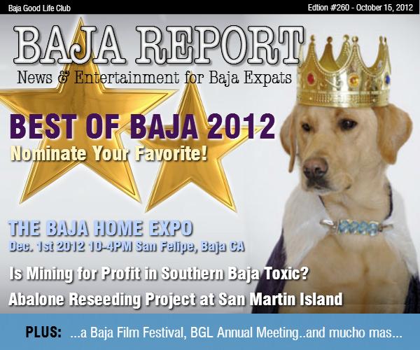 Report Report #260