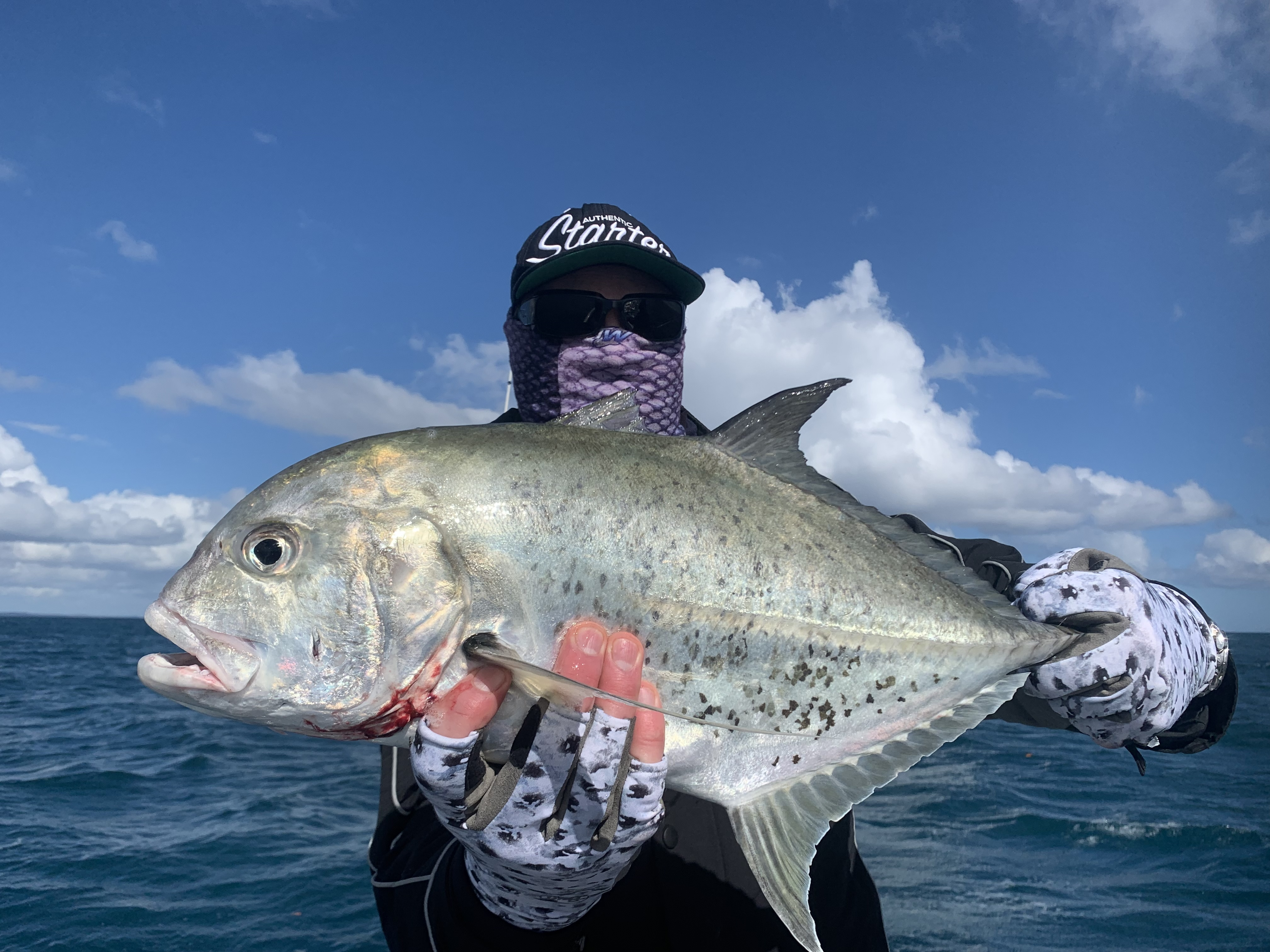 Winter trevally's keeping us busy