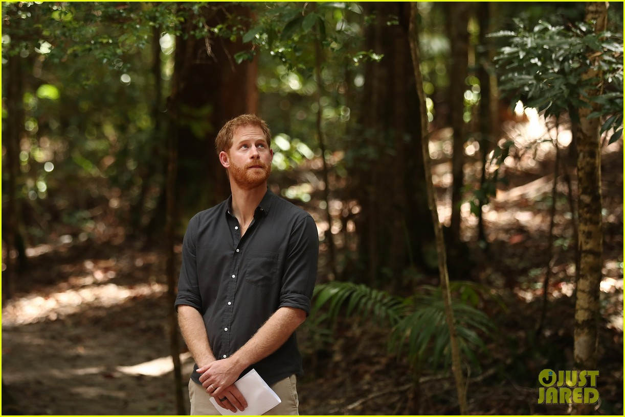 Meet and greet at Kingfisher Jetty and Prince Harry in the rainforest on Fraser Island