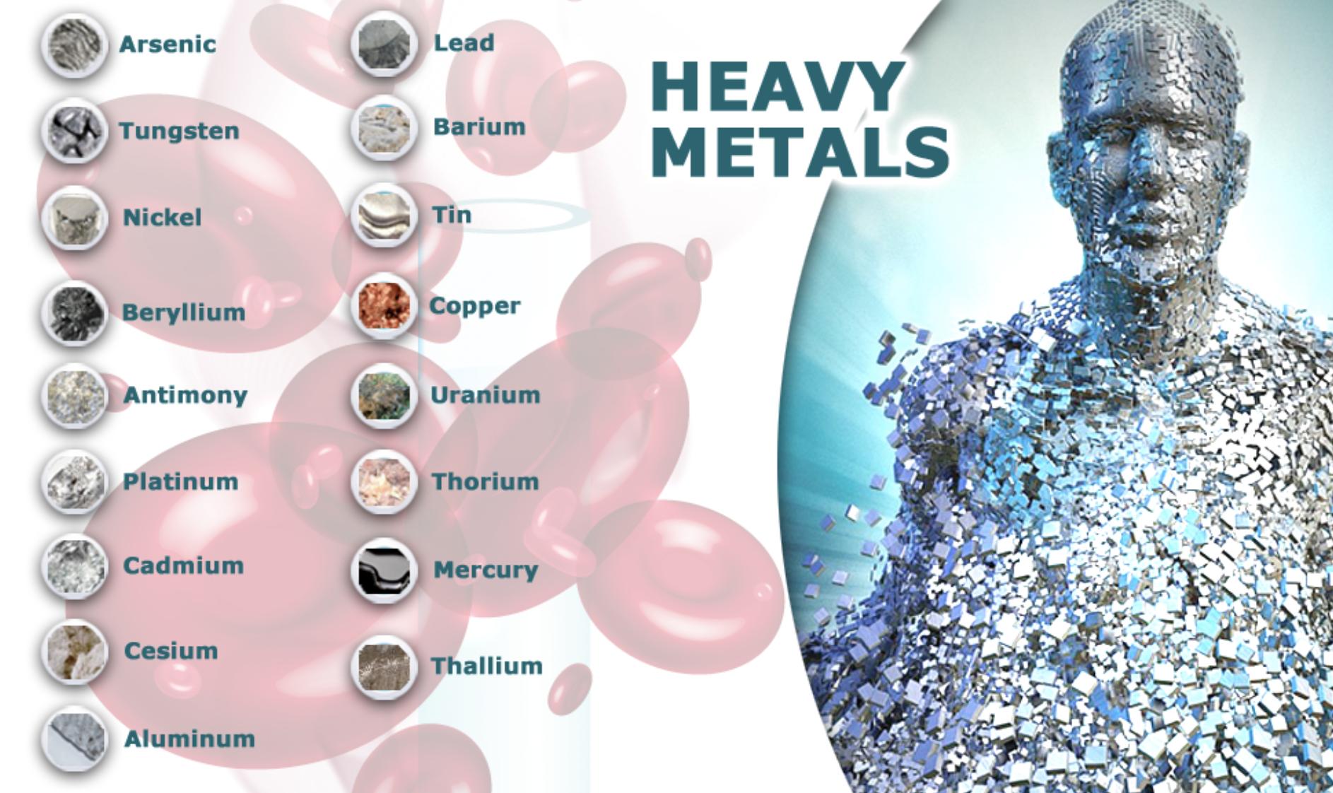 toxic heavy metals