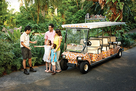 guided-tram-singapore-zoo