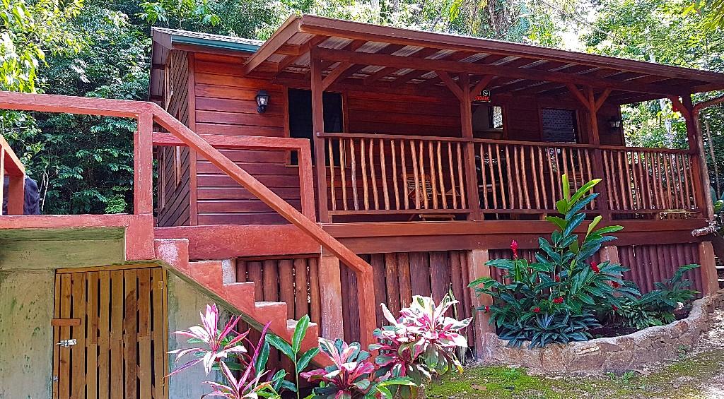 Tree Tops Belize Vacation Rental