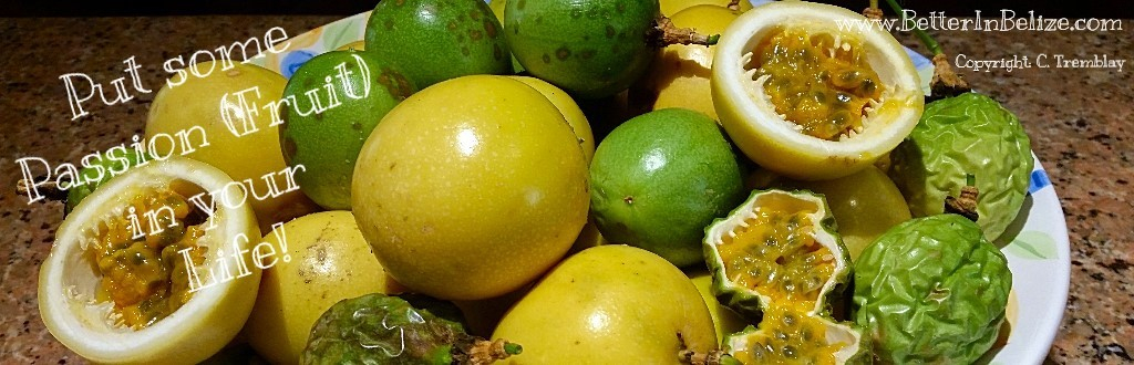 Passion Fruit in Belize
