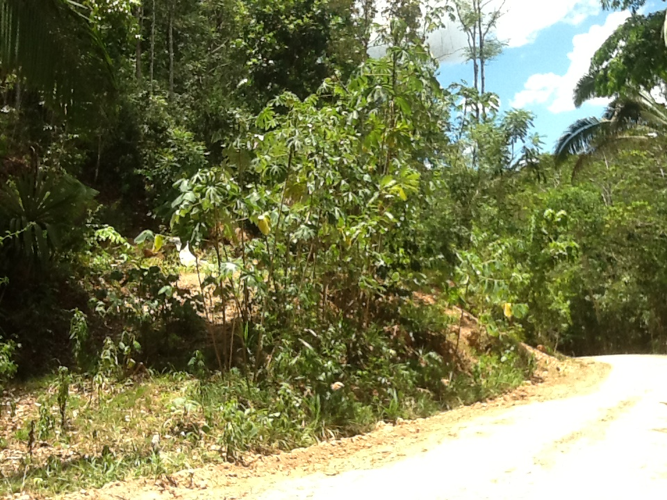 Better In Belize Lot For Sale
