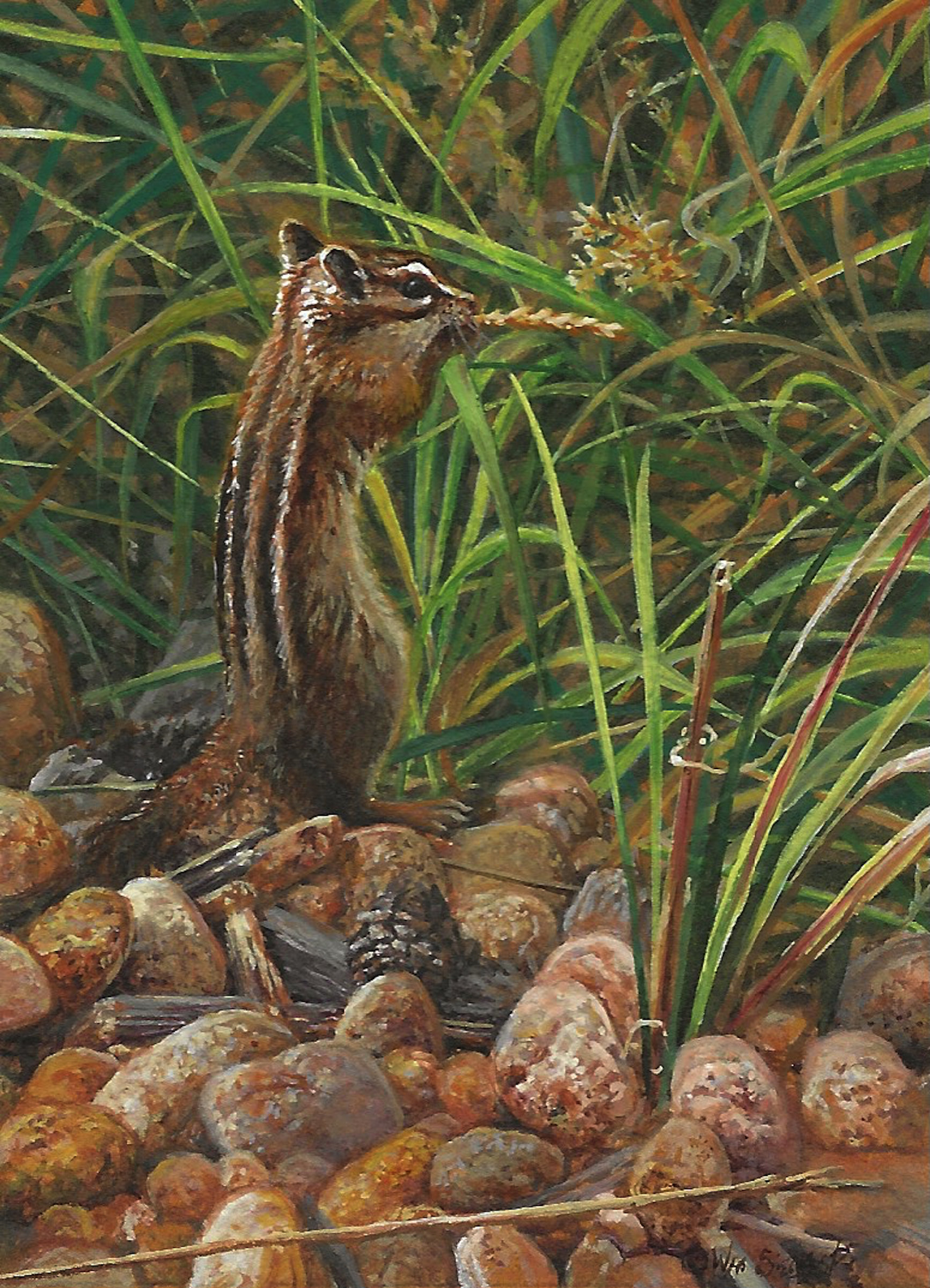 Chipmunk painting by Wes Siegrist
