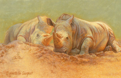 Rhino Painting by Rachelle Siegrist