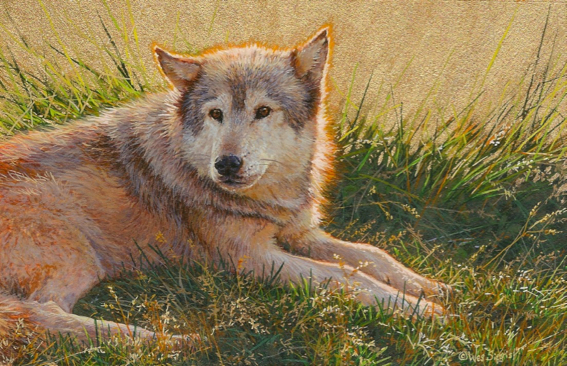 Wolf painting by Wes Siegrist
