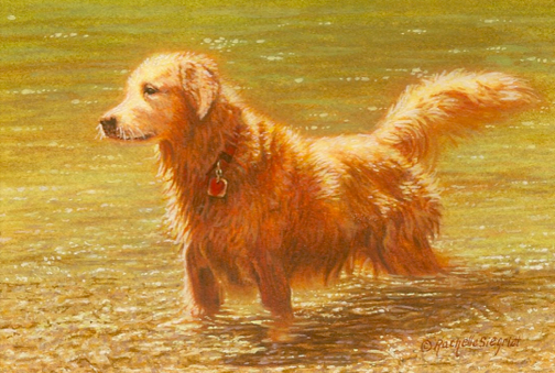 Golden retriever painting by Rachelle