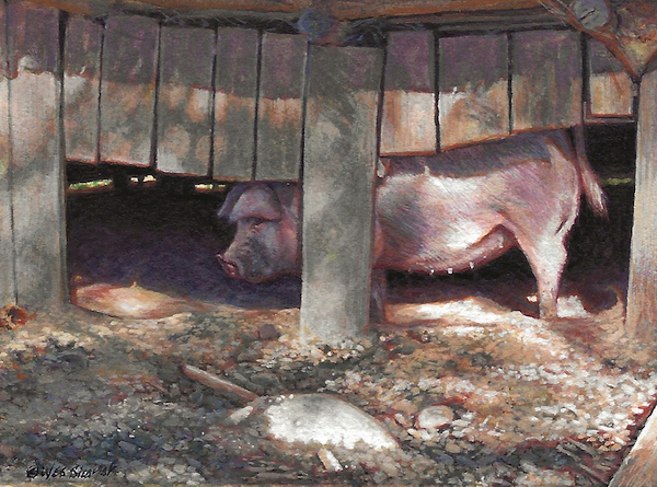 Pig painting by Wes Siegrist
