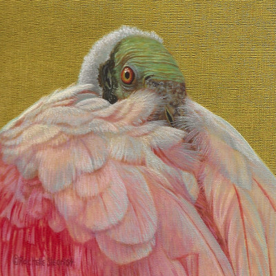 Roseate spoonbill painting by Rachelle Siegrist
