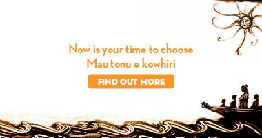 Māori Electoral Option digital banner