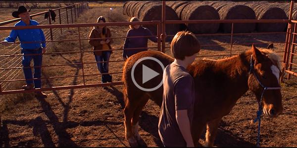 Watch an inspiring video about TF-EAP.