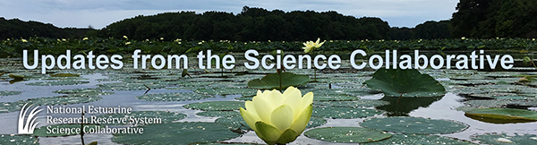 Special Update from the Science Collaborative