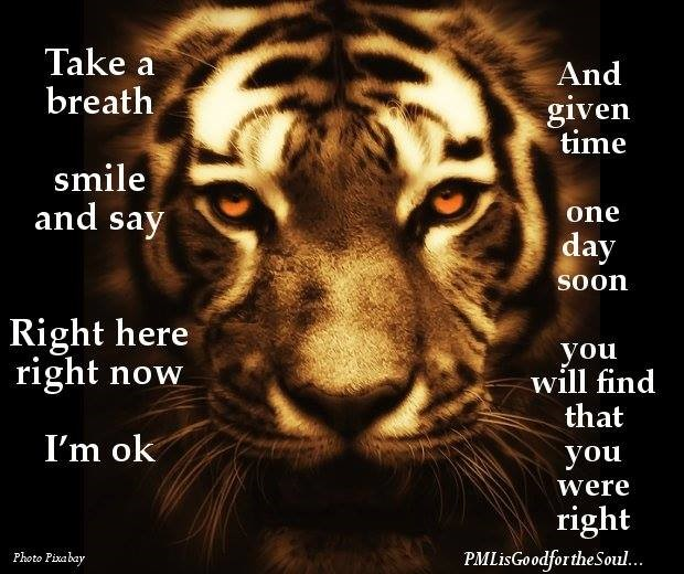 Take a breath smile and say right here right now I'm ok