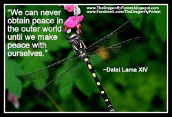 We can never obtain peace in the outer world until we make peace with outselves