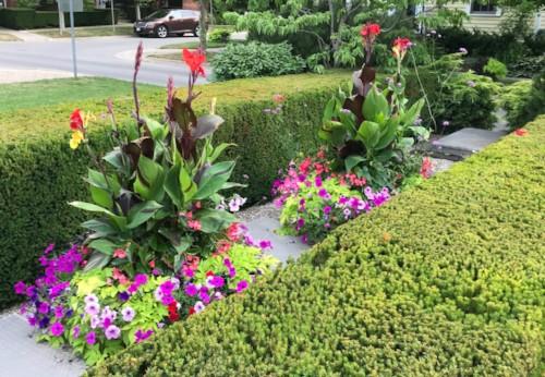 Garrison Village Drive garden