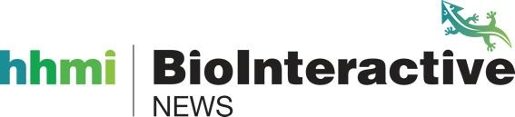 BioInteractive News