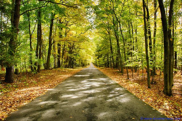 Autumn lane in Door County