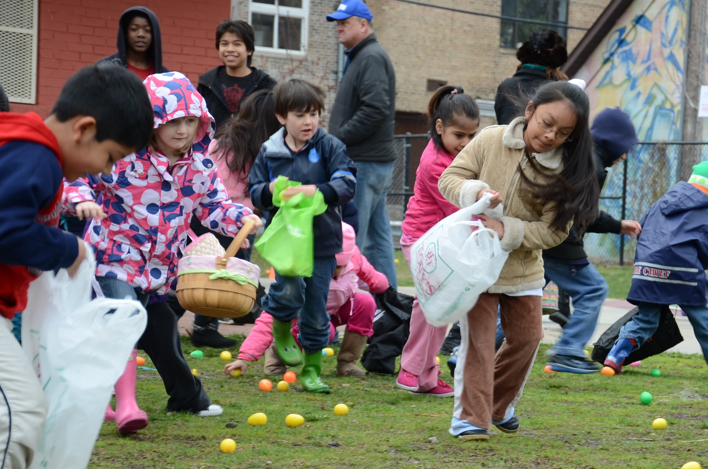 IMAGE: Egg Hunt