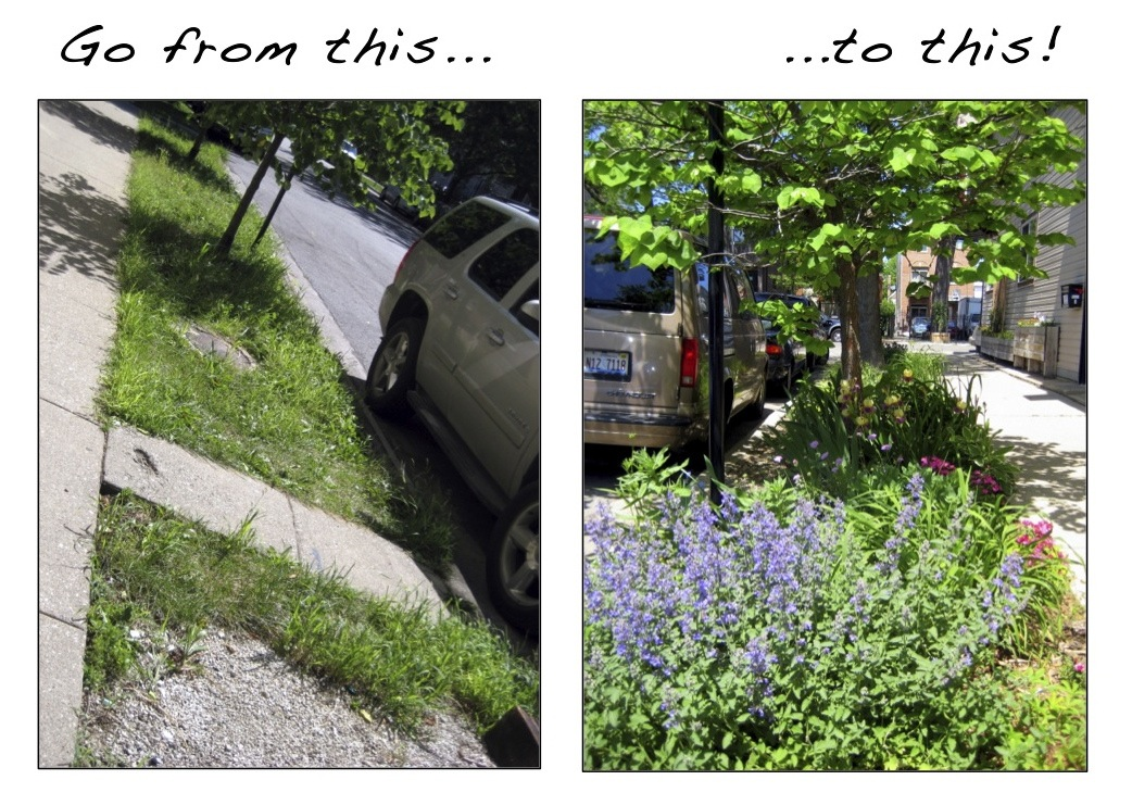 IMAGE: Before and after parkway