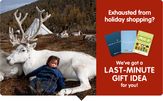 Exhausted from holiday shopping? We've got a last-minute gift idea for you!