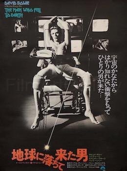 Nicolas Roeg Original Vintage Movie Poster