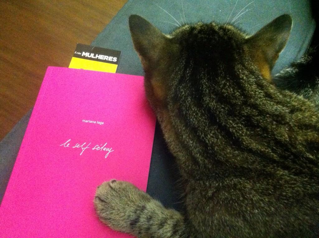 """Um gato listrado deitado, com a pata apoiada sobre um livro rosa, com o título escrito em letra cursiva em tinta prateada: """"La Self Sélavy"""". Dentro do livro, um marcador amarelo escrito: """"Leia Mulheres"""""""