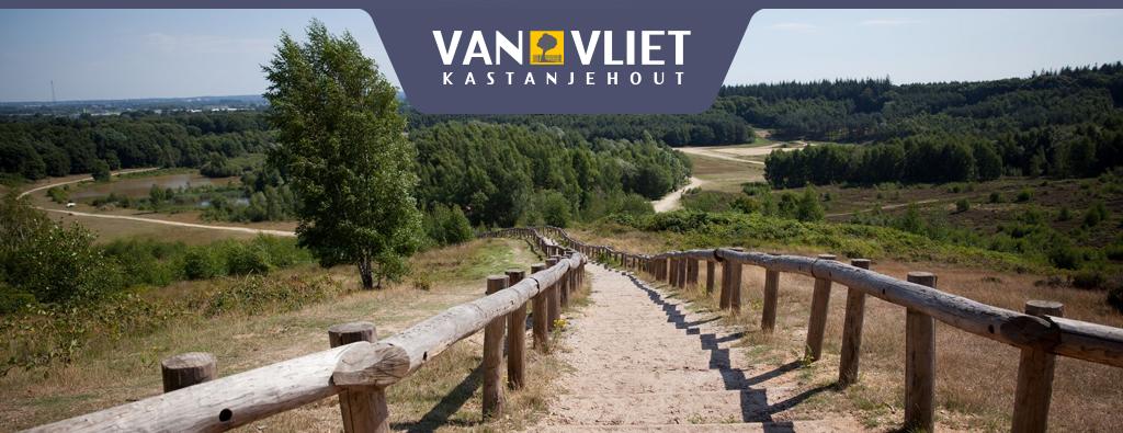 Van Vliet Kastanjehout