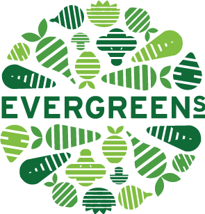 Evergreens Salads