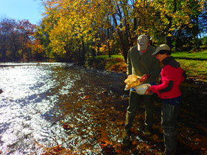 Citizen scientists in New Jersey
