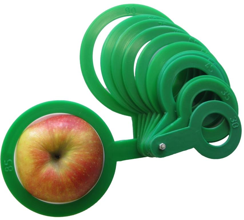 Fruit callipers plastic