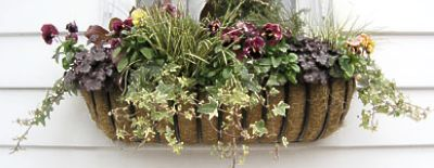 planted window hayrack