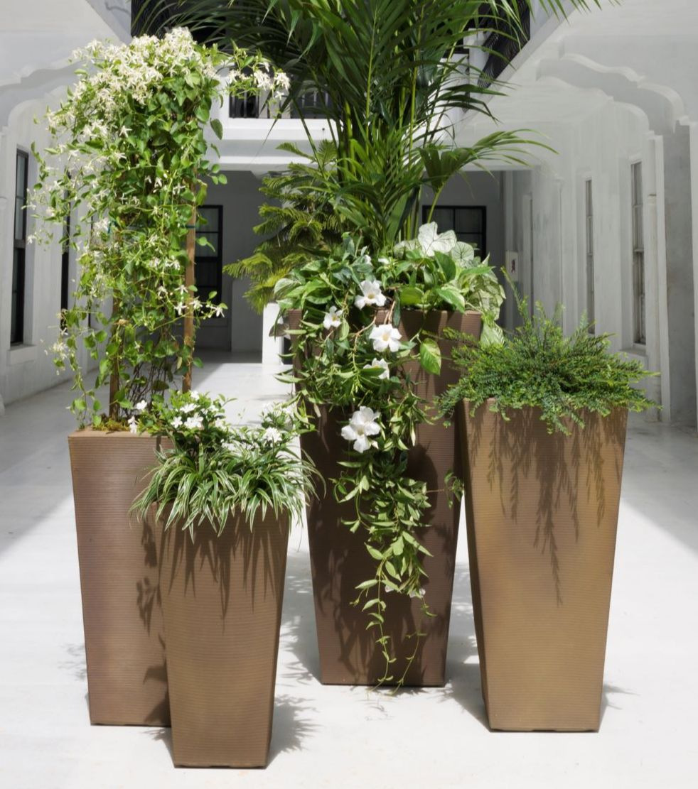 Tall lightweight planters can help hide unsightly views
