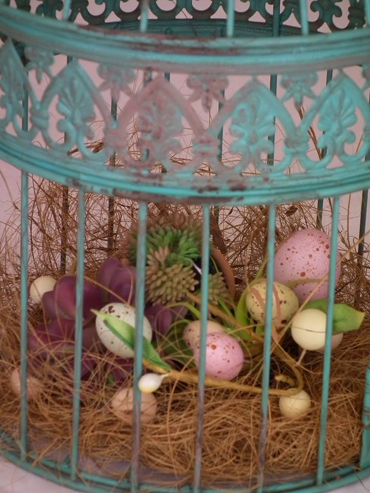 chickadee cage with eggs