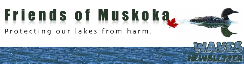 Friends of Muskoka Waves Newsletter