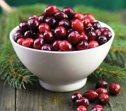 Cranberries Support Healthy Circulation