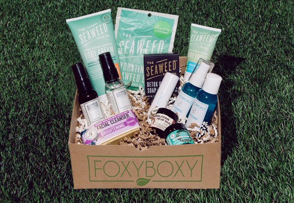 Foxyboxy – from $25/mo