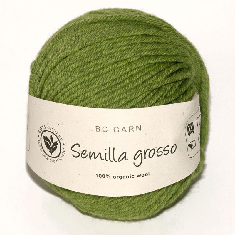 Semilla Grosso APPLE-BSG-OA1112