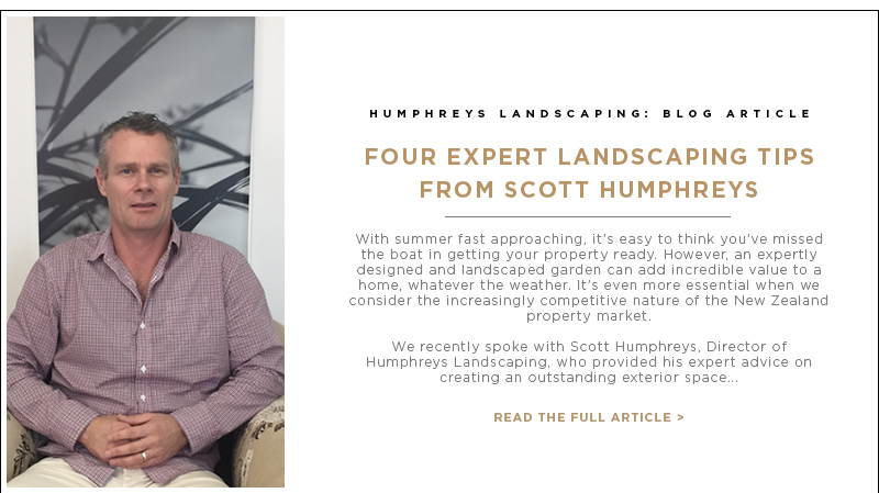 Blog Article: Four Expert Landscaping Tips from Scott Humphreys
