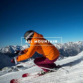 SCOTT Riot+ Ski Pole