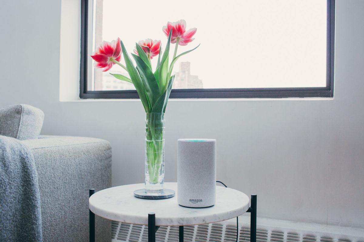An Echo on a living room side table