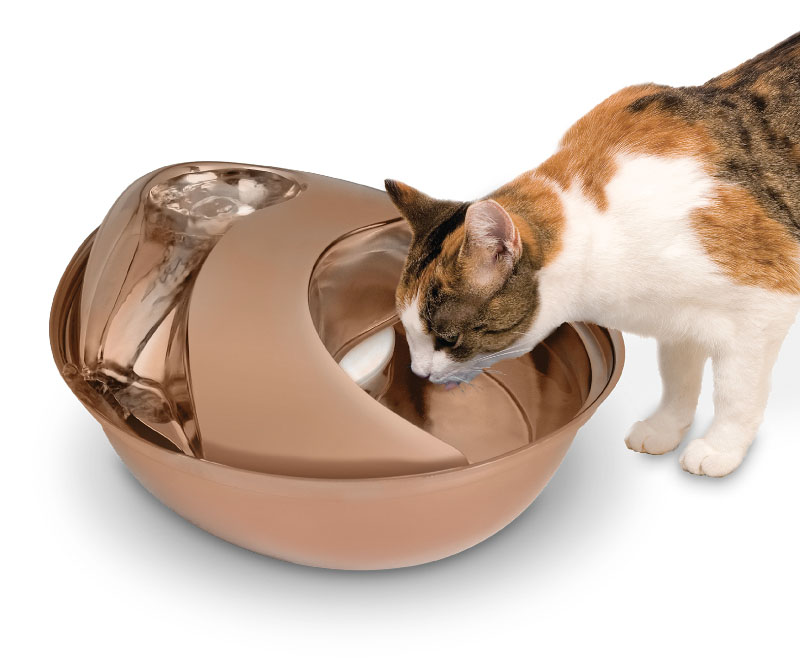 Rose Gold Stainless Steel Circulating Drinking Fountain for Pets at Pet Stop Store