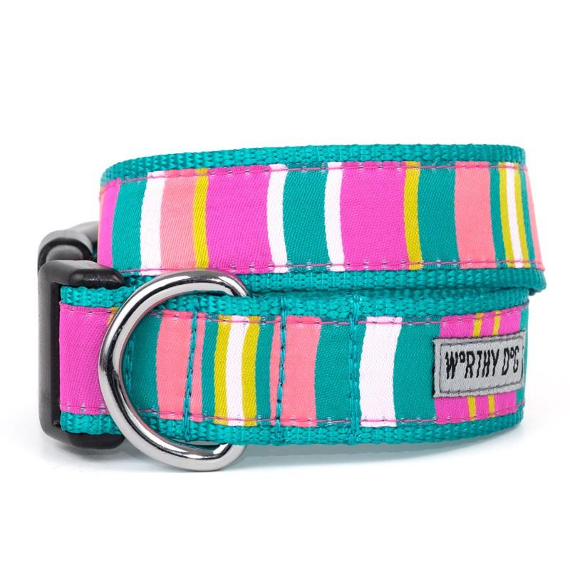 Cute & Playful Fiesta Stripe Dog Collar & Leash at Pet Stop Store