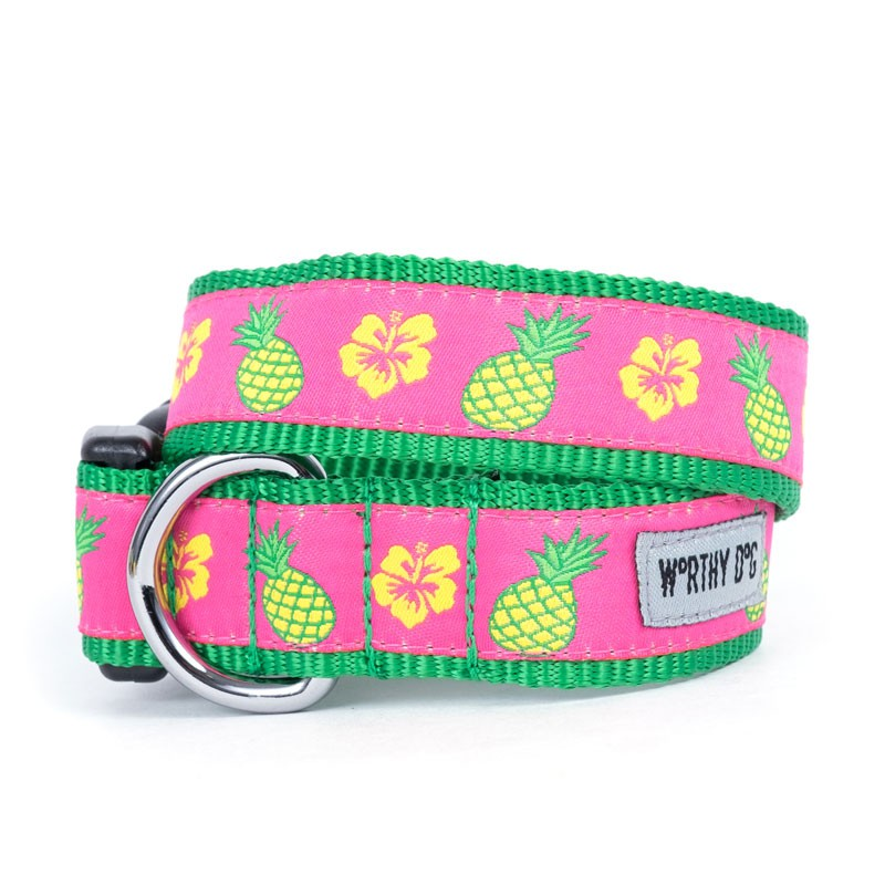Cute & Playful Pineapples Dog Collar & Leash at Pet Stop Store