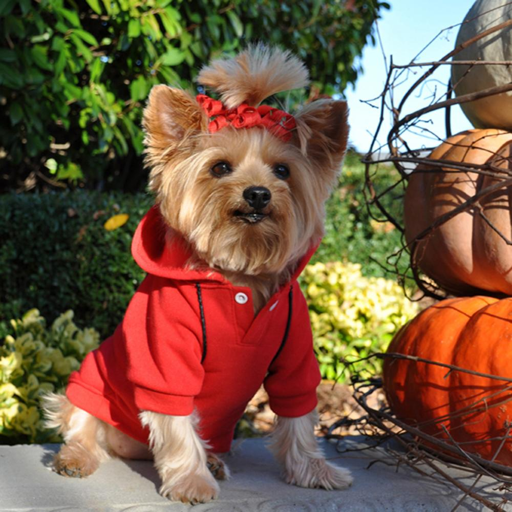 Cute Sporty Flamin' Red Dog Hoodie at Pet Stop Store