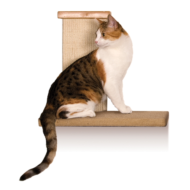 Sky High Climber Wall Perch for Cats at Pet Stop Store
